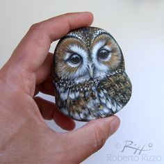 Tawny Owl Nest A Fantastic Lucky Charm to Decorate your Home Painted Rocks Owls, Owl Rocks, Painted Rock Animals, Pebble Painting, Pebble Art, Stone Painting, Art Rupestre, Art Pierre, Tawny Owl