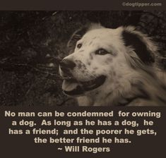 Appreciate the special dogs in your life with these inspirational dog quotes. Tell great words about your pooches using the 33 most popular quotes about the m Dog Quotes, Animal Quotes, Animal Pics, I Love Dogs, Puppy Love, Will Rogers Quotes, Pet Dogs, Dog Cat, Doggies