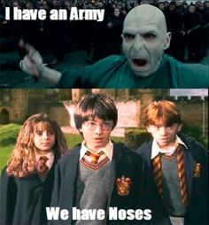 Harry potter might be one of the greatest novel and movie series, it was so perfect and eye catching. Well to make Harry Potter even more entertaining here are some funniest and Hilarious Memes of … La Saga Harry Potter, Harry Potter Puns, Harry Potter Pictures, Sirius Black, Hogwarts, Funny Quotes, Hilarious Memes, Quotes Quotes, Voldemort Nose