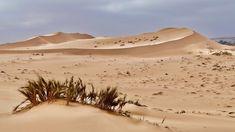 Reise nach Namibia - 25 € bei Airbnb, Link im Profil Namibia, Link, Profile, Travel