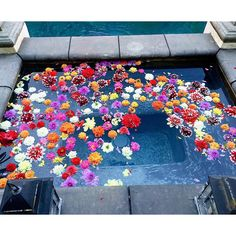 Floating dahlias for a Moroccan-inspired party