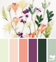 Beautiful colors. Not something I would have thought of, but I love it { foraged hues } image via: @amermyla