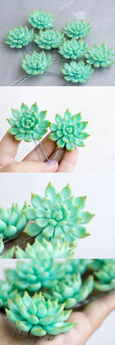 Succulent hair pins (handmade) from @EtenIren #succulents #hair #pins #Style #gifts #Love #succulent #plants #fashion