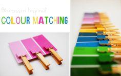 Harvesting Kale: Montessori Inspired Colour Matching