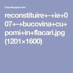 reconstituire+-+ie+007+-+bucovina+cu+pomi+in+flacari.jpg (1201×1600)