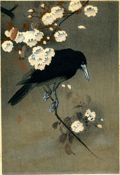 "Woodblock print circa 1910 by Ohara Koson ""Crow and Blossom"" (public domain) Crow Art, Bird Art, Ohara Koson, The Crow, Bird Poster, Art Asiatique, Art Prints For Sale, Japanese Painting, Japanese Prints"