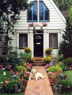 THIS IS IT! My dream home!!! (add three more dogs and a big family and you have my dream life!)