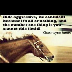 Barrel racing and Charmayne James.she's been my idol since I was a kid! Rodeo Quotes, Equine Quotes, Equestrian Quotes, Hunting Quotes, Quotes Quotes, Cowboy Quotes, Life Quotes, Equestrian Problems, Barrel Racing Quotes