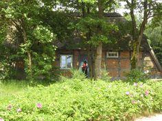 Miriam und André von Roll the Planet zu Besuch in der Lüneburger Heide. #meinNiedersachsen