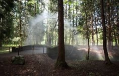 Mystical Arc in the Forest by James Tapscott – Fubiz Media