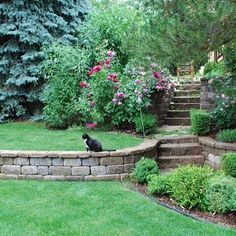 tiered garden design - love this retaining wall to replace our crumbling one