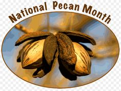 April is National Pecan Month celebrate locally...