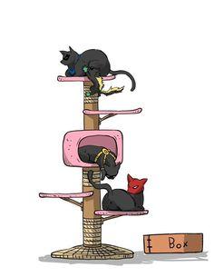 The kitty-bird palace