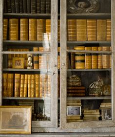 Bookshelves of antique leather books.....