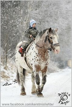 A boy on a big horse, beautiful! I added falling snow and a border to it. DF.