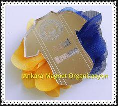Fenerbahçe magnet