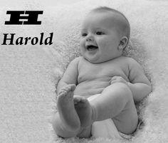 H=Harold