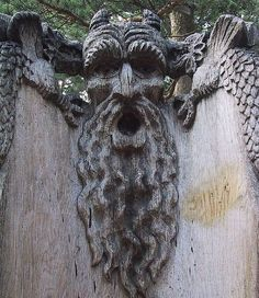 amazing tree sculptures 17 a