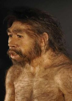 Neandertal Reconstruction
