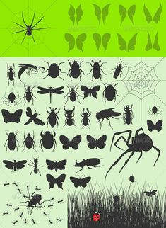 Realistic Graphic DOWNLOAD (.ai, .psd) :: http://sourcecodes.pro/pinterest-itmid-1000550170i.html ... Collection of insects2 ...  animal, ant, butterfly, cartoon, dragonfly, fang, fauna, fear, fly, hunting, icon, illustration, insect, moustache, natural, nature, organism, pest, pollen, silhouette, spider, vector, web  ... Realistic Photo Graphic Print Obejct Business Web Elements Illustration Design Templates ... DOWNLOAD :: http://sourcecodes.pro/pinterest-itmid-1000550170i.html