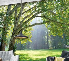 Bosque Sol Tropical Verde Bosque 3D Completo Mural de Pared Foto Wallpaper