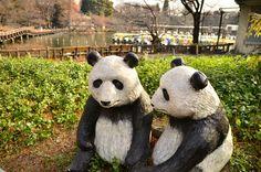 【リアルキ吉祥寺編】井の頭公園にあるパンダの像。老夫婦のような味わいあるパンダです!