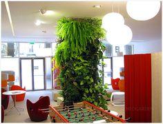 Un mur végétal. Green wall, vertical garden, вертикальный сад, зеленая стена