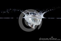 Champignon falling in water on an isolated background