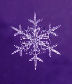 Snowflake #HopeJoyPurple