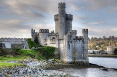 Plan your visit with an up to date list of the times of activities, tours and events at Blackrock Castle.