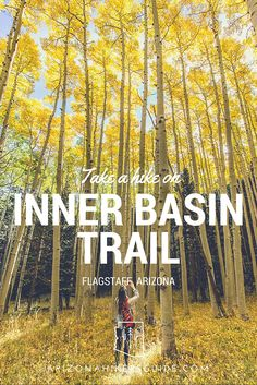 Hike through aspen groves to the Inner Basin of the San Francisco Peaks. This hike will blow you away!