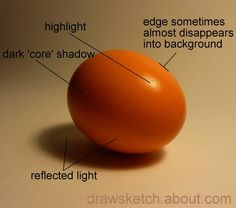 Pencil Shading Exercise - Shading an Egg: Shade an Egg - Observing the Light and Shade Value Drawing, Drawing Lessons, Drawing Tips, Art Lessons, Food Drawing, Drawing Reference, Chalk Drawings, Art Drawings, Art Et Architecture