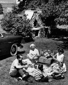Family Picnic - 1953