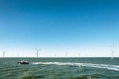 Consultation sur les enjeux énergétiques - L'éolien ne mérite pas d'être désigné bouc émissaire Beach, Design, Outdoor, Scapegoat, Environment, Outdoors, The Beach, Beaches