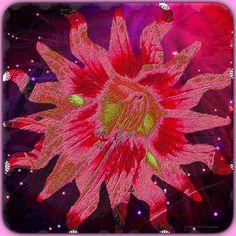 Tanya Lynn Photography Original Art Designs using photos of my Gardens  $250.00.Contact Info  tanyalynndowell1950@gmail.com