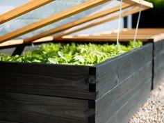 Att odla i pallkrage har många fördelar. Här får du tips och knep på hur du gör, vad du kan odla i pallkragar och hur du enkelt kan bygga din egen.