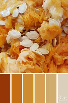 Image Color Palette 217 by Tracey Bureau