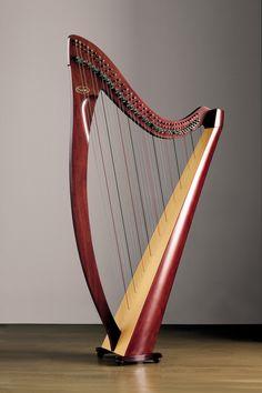 I played the harp in high school.      Salvi Harps