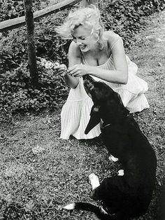 Marilyn Monroe with one of her Basset Hounds