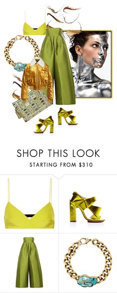 """I Step Forward For Fashion"" by the-house-of-kasin ❤ liked on Polyvore featuring Emilio Pucci, Delpozo, Merchant Archive, Balmain, Haider Ackermann, silk and satin"