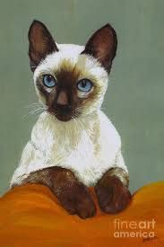 Image result for rock painting siamese cat