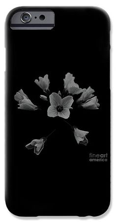 Cuckooflower IPhone Case for Sale by Sverre Andreas Fekjan Cell Phone Covers, Iphone 6 Cases, Pillow Sale, I Am Awesome, Throw Pillows, Poplin Fabric, Printed, Presentation, Shell