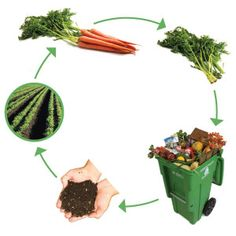 Preparing for Hard Times: THAT is NOT Composting!!!