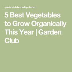 5 Best Vegetables to Grow Organically This Year | Garden Club