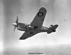 Royal Canadian Air Force Kittyhawk fighter from underneath