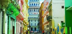 For delicious food and world-class art, Havana