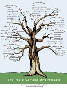 65 Best Tree Of Life Images Tree Of Life Tree Art Tree Of Life Art
