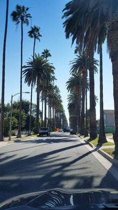 , Beverly Hills, CA.South Palm Drive is a quiet street that goes often unnoticed, compared to the more well-known part North Palm Dr. Los Angeles Wallpaper, California Wallpaper, California Dreamin', California Palm Trees, City Of Angels, City Photography, Travel Aesthetic, Countries Of The World, Aesthetic Pictures