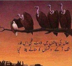 Urdu Quotes In English, Poetry Quotes In Urdu, Urdu Poetry Romantic, Love Poetry Urdu, Quotations, Soul Poetry, Poetry Pic, Poetry Lines, Poetry Feelings