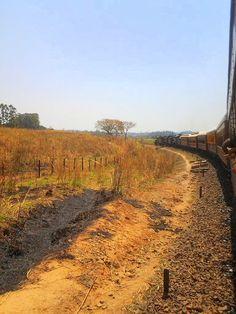 E o trem vai fazendo a curva...